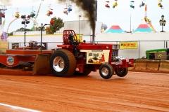 Super-Farm-Katlyn-McDonald-Red-Mule